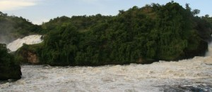 Near Murchison falls