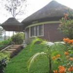 Peace Guest House