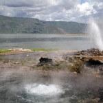Lake Bogoria Hot Spring