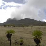 Mt Elgon