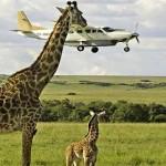Uganda flying Safari